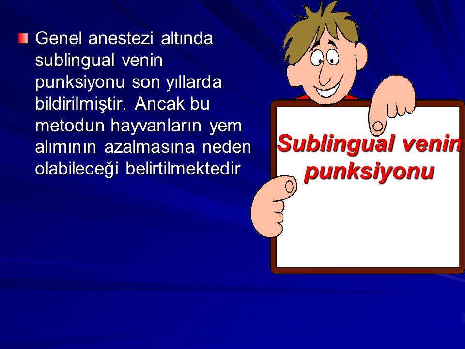 Sublingual venin punksiyonu