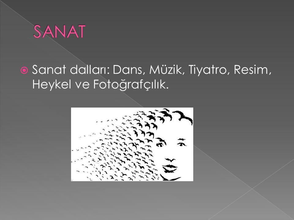 SANAT Sanat dalları: Dans, Müzik, Tiyatro, Resim, Heykel ve Fotoğrafçılık.