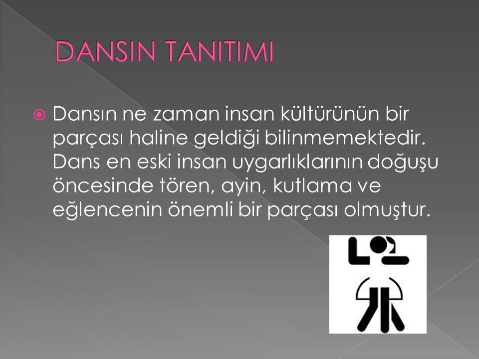 DANSIN TANITIMI