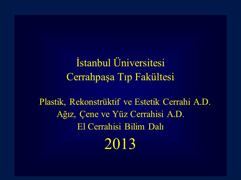 2013 İstanbul Üniversitesi Cerrahpaşa Tıp Fakültesi