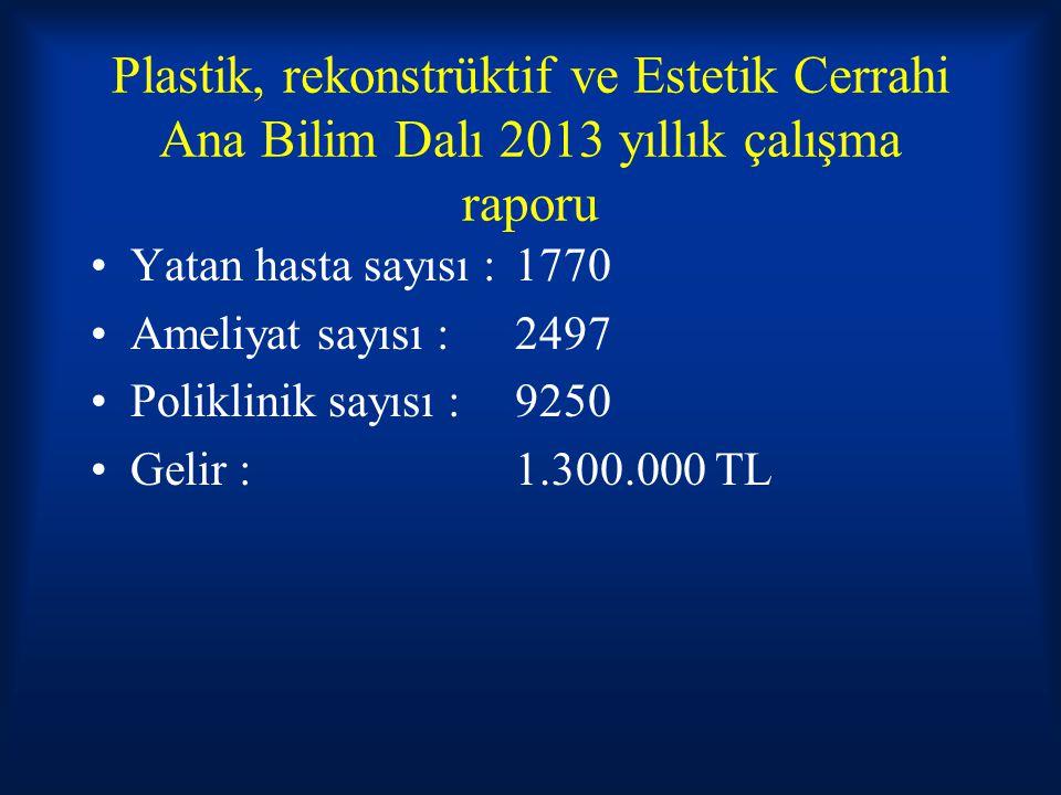 Plastik, rekonstrüktif ve Estetik Cerrahi Ana Bilim Dalı 2013 yıllık çalışma raporu