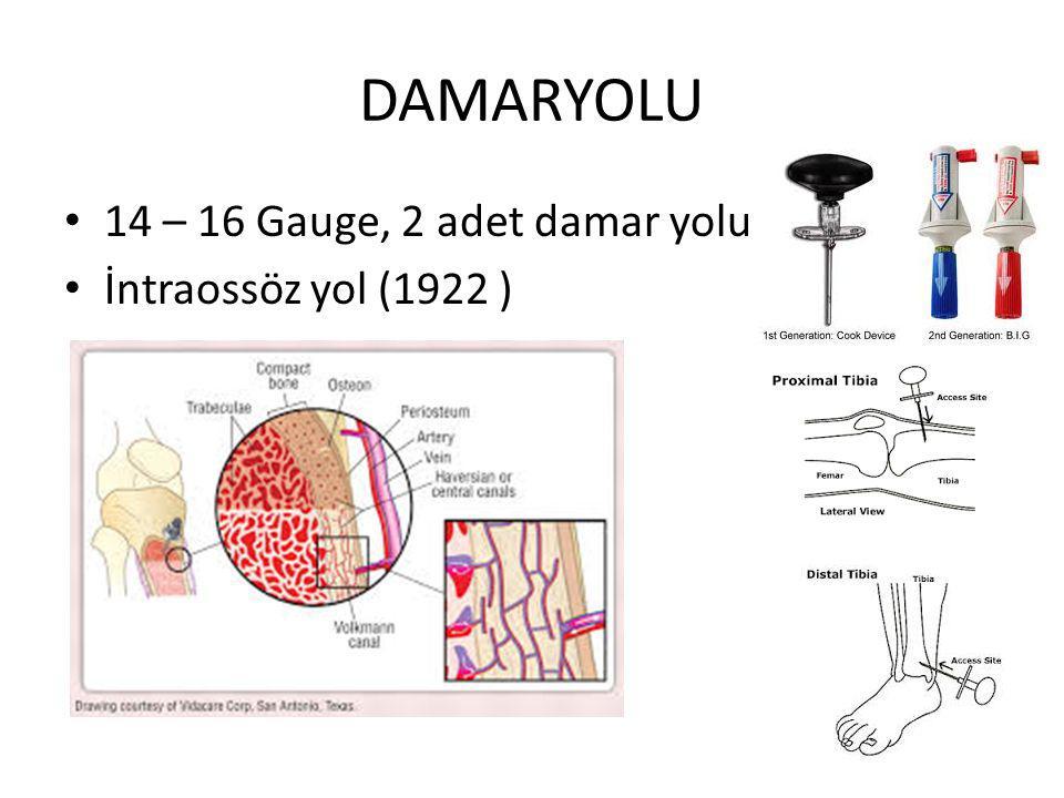 DAMARYOLU 14 – 16 Gauge, 2 adet damar yolu İntraossöz yol (1922 )