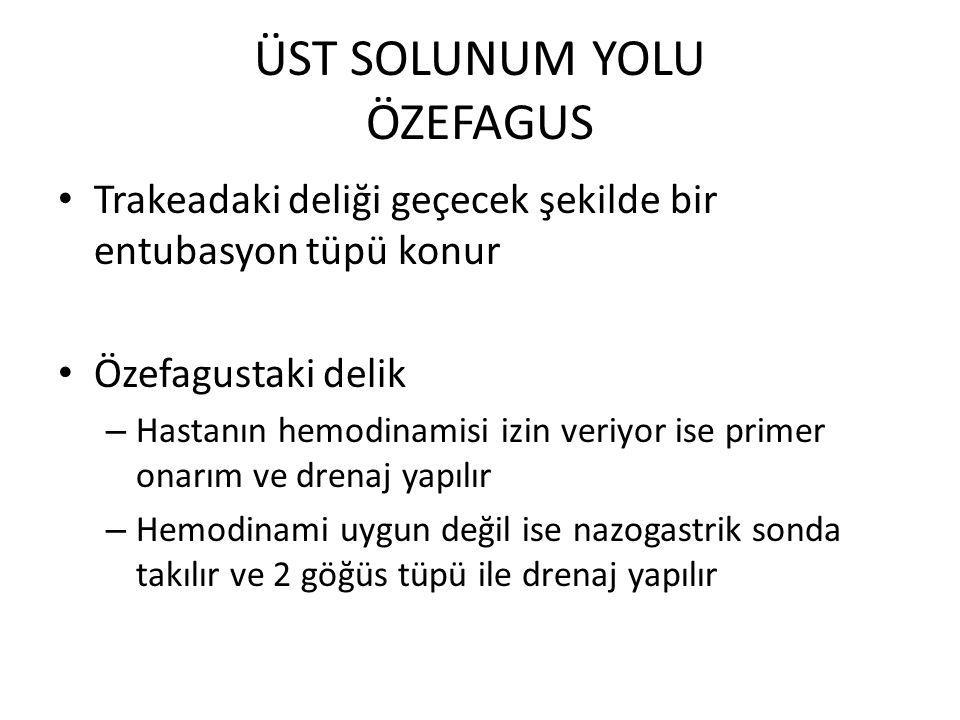 ÜST SOLUNUM YOLU ÖZEFAGUS