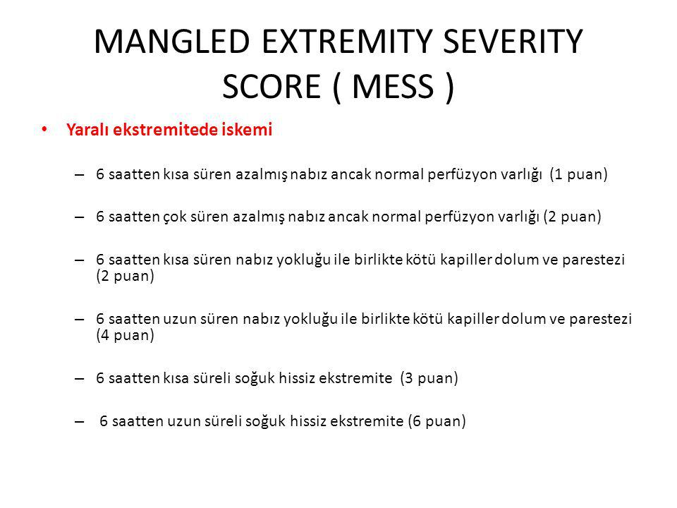 MANGLED EXTREMITY SEVERITY SCORE ( MESS )