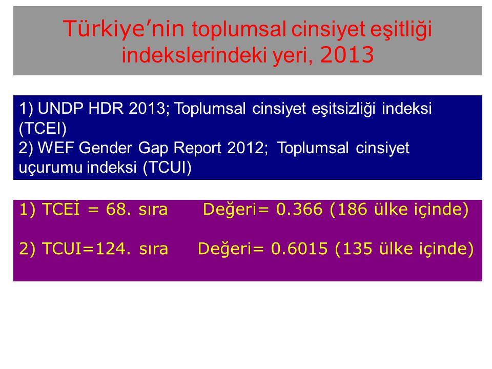 Türkiye'nin toplumsal cinsiyet eşitliği indekslerindeki yeri, 2013