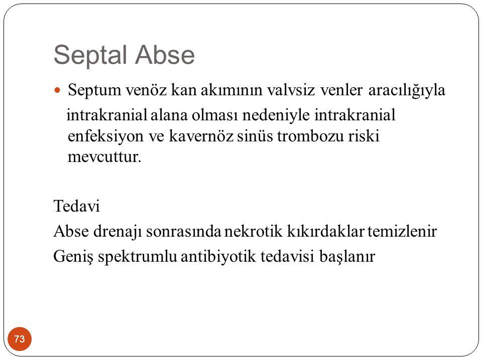 Septal Abse Septum venöz kan akımının valvsiz venler aracılığıyla