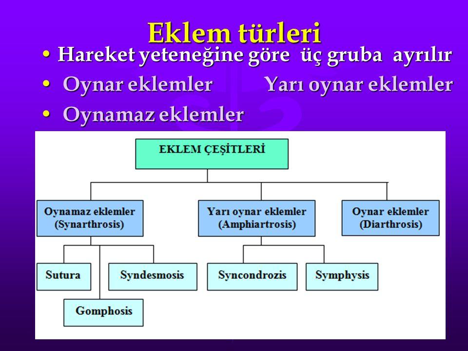 Eklem türleri Hareket yeteneğine göre üç gruba ayrılır