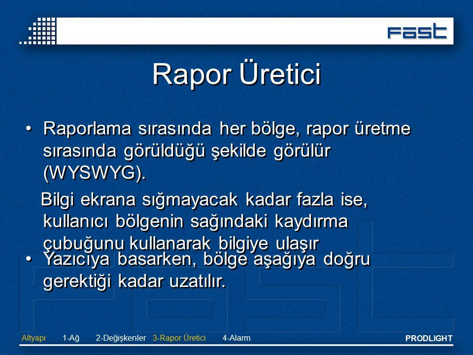 Rapor Üretici Raporlama sırasında her bölge, rapor üretme sırasında görüldüğü şekilde görülür (WYSWYG).