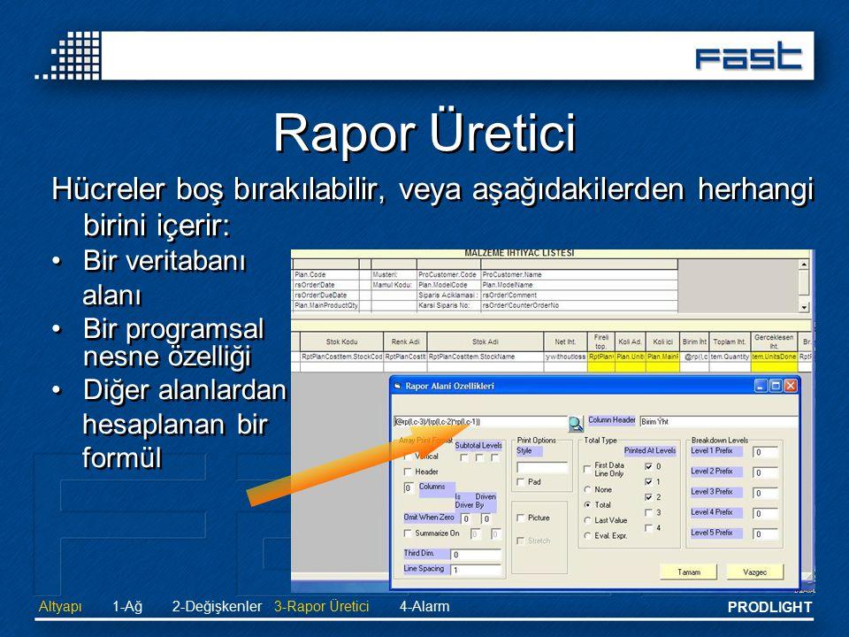 Rapor Üretici Hücreler boş bırakılabilir, veya aşağıdakilerden herhangi birini içerir: Bir veritabanı.