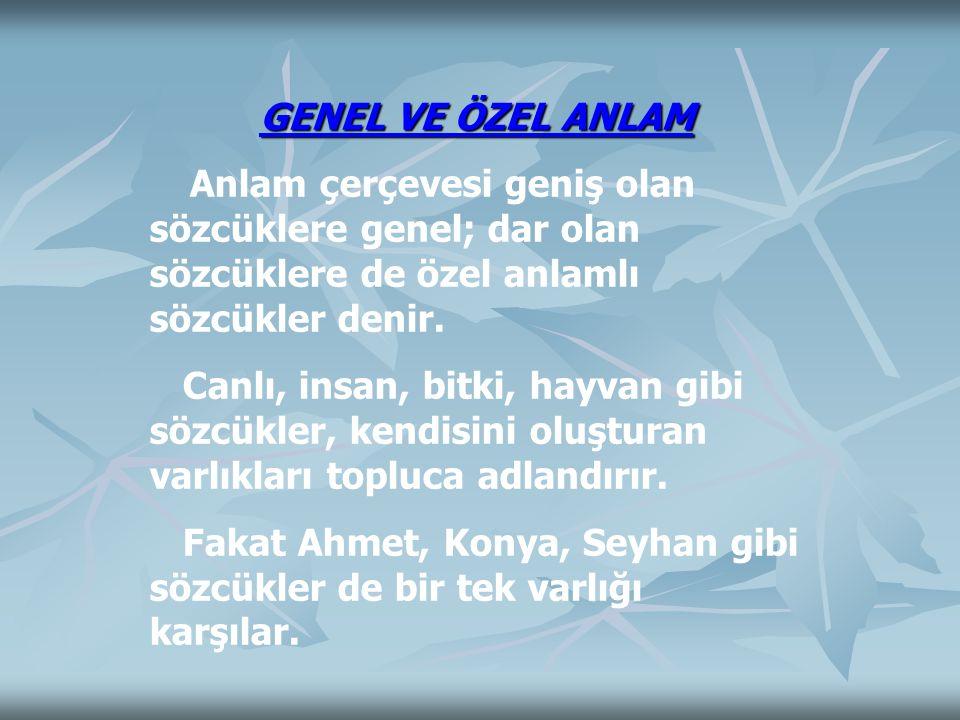 Fakat Ahmet, Konya, Seyhan gibi sözcükler de bir tek varlığı karşılar.
