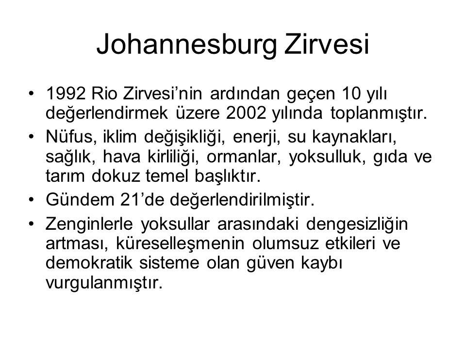 Johannesburg Zirvesi 1992 Rio Zirvesi'nin ardından geçen 10 yılı değerlendirmek üzere 2002 yılında toplanmıştır.