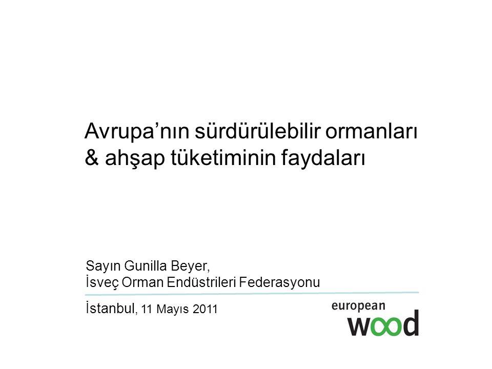 Avrupa'nın sürdürülebilir ormanları & ahşap tüketiminin faydaları