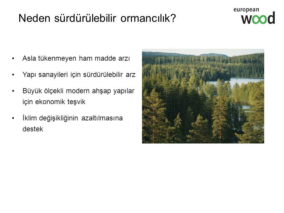 Neden sürdürülebilir ormancılık