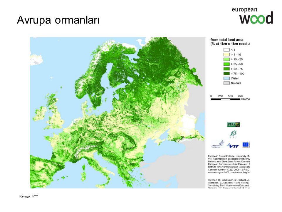 Avrupa ormanları Kaynak: VTT