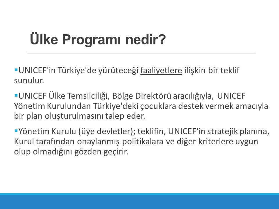 Ülke Programı nedir UNICEF in Türkiye de yürüteceği faaliyetlere ilişkin bir teklif sunulur.