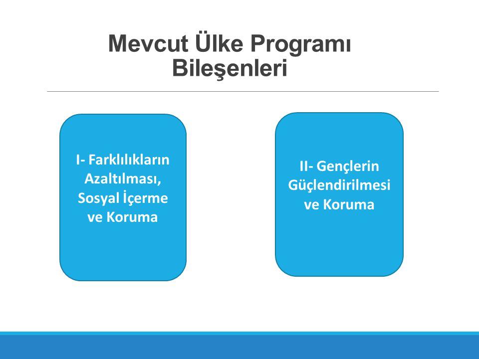 Mevcut Ülke Programı Bileşenleri