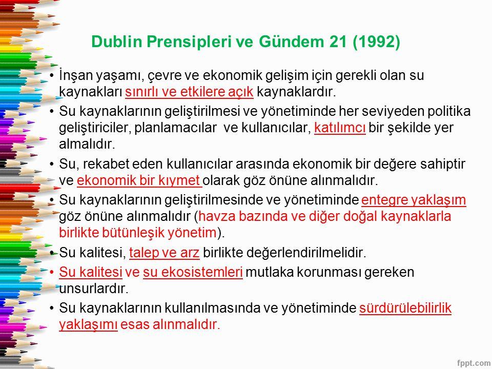 Dublin Prensipleri ve Gündem 21 (1992)