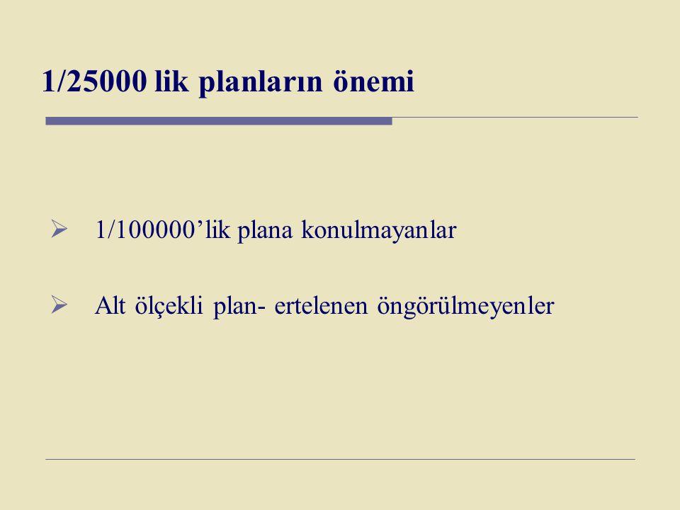 1/25000 lik planların önemi 1/100000'lik plana konulmayanlar