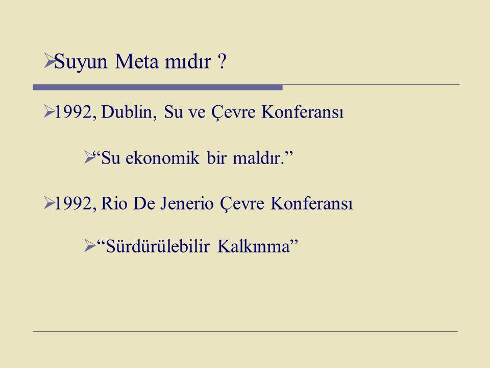 Suyun Meta mıdır 1992, Dublin, Su ve Çevre Konferansı