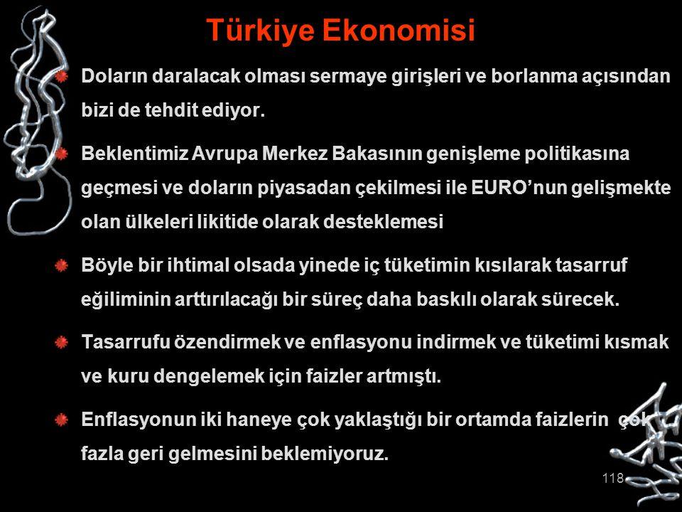 Türkiye Ekonomisi Doların daralacak olması sermaye girişleri ve borlanma açısından bizi de tehdit ediyor.