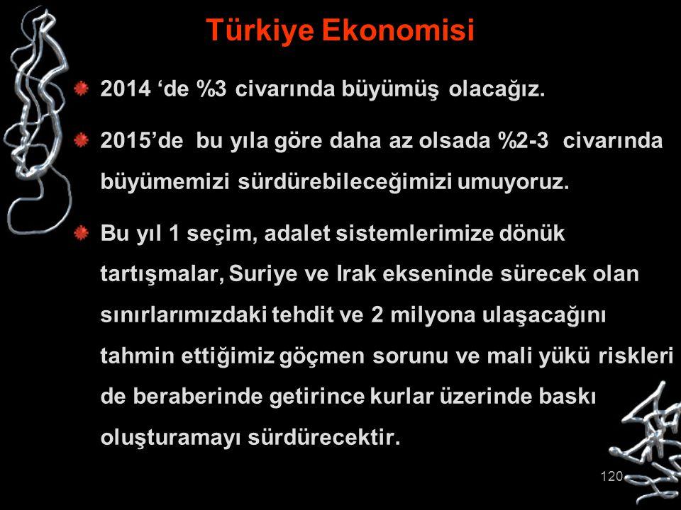 Türkiye Ekonomisi 2014 'de %3 civarında büyümüş olacağız.