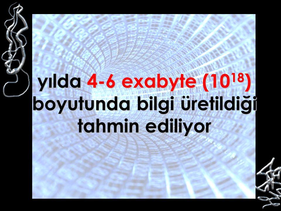 yılda 4-6 exabyte (1018) boyutunda bilgi üretildiği tahmin ediliyor