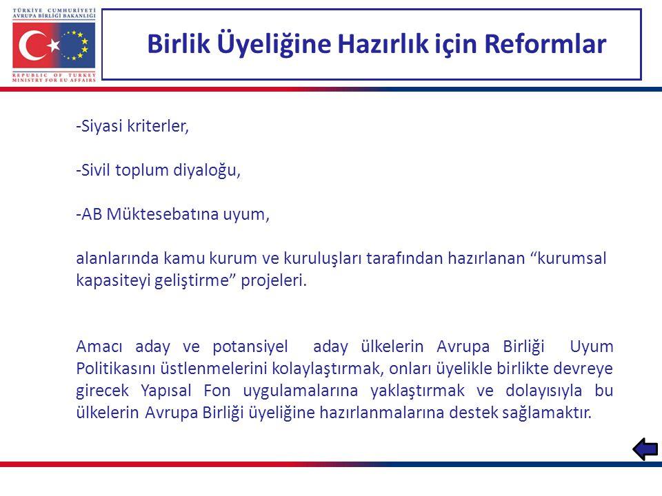 Birlik Üyeliğine Hazırlık için Reformlar