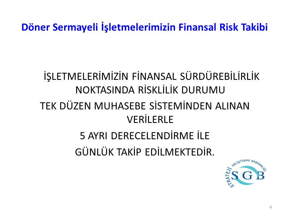 Döner Sermayeli İşletmelerimizin Finansal Risk Takibi