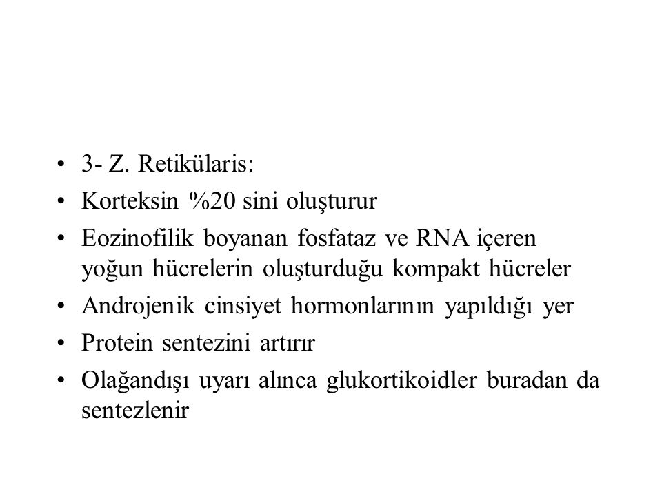 3- Z. Retikülaris: Korteksin %20 sini oluşturur. Eozinofilik boyanan fosfataz ve RNA içeren yoğun hücrelerin oluşturduğu kompakt hücreler.