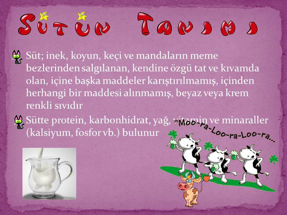 Süt; inek, koyun, keçi ve mandaların meme bezlerinden salgılanan, kendine özgü tat ve kıvamda olan, içine başka maddeler karıştırılmamış, içinden herhangi bir maddesi alınmamış, beyaz veya krem renkli sıvıdır