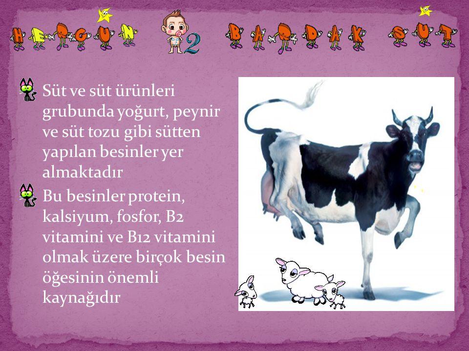 Süt ve süt ürünleri grubunda yoğurt, peynir ve süt tozu gibi sütten yapılan besinler yer almaktadır