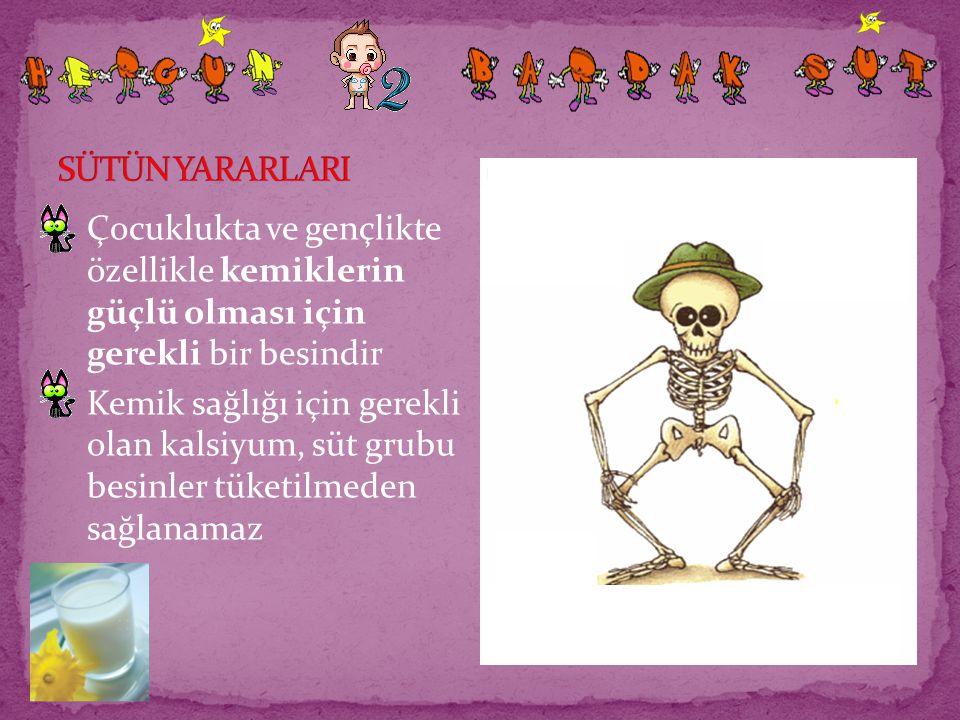 SÜTÜN YARARLARI Çocuklukta ve gençlikte özellikle kemiklerin güçlü olması için gerekli bir besindir.