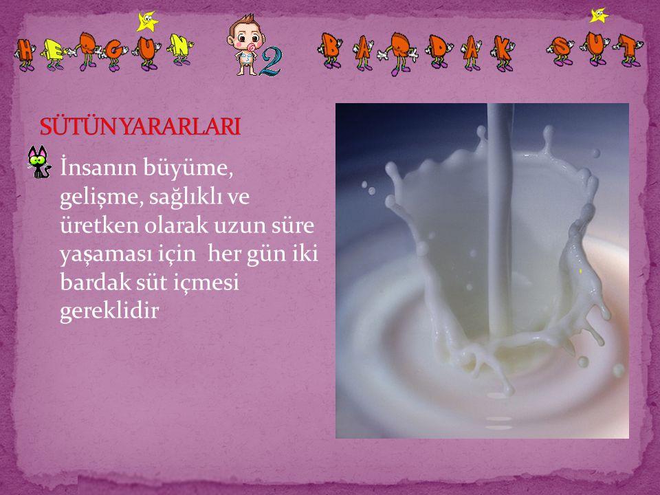 SÜTÜN YARARLARI İnsanın büyüme, gelişme, sağlıklı ve üretken olarak uzun süre yaşaması için her gün iki bardak süt içmesi gereklidir.