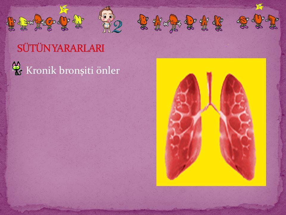 SÜTÜN YARARLARI Kronik bronşiti önler
