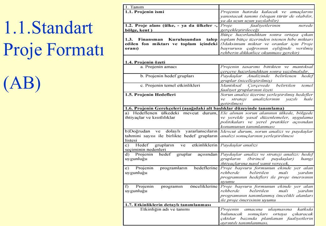 1.1.Standart Proje Formatı