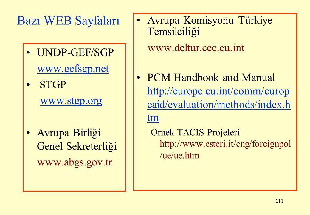 Bazı WEB Sayfaları Avrupa Komisyonu Türkiye Temsilciliği