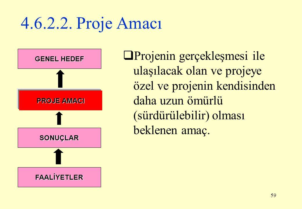 4.6.2.2. Proje Amacı