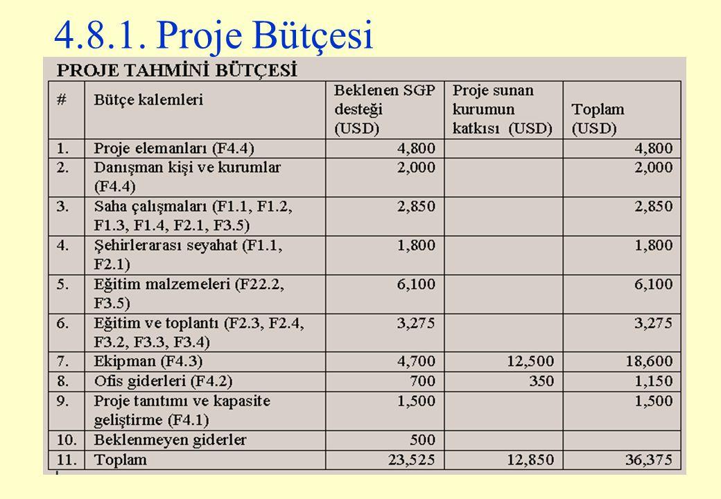 4.8.1. Proje Bütçesi