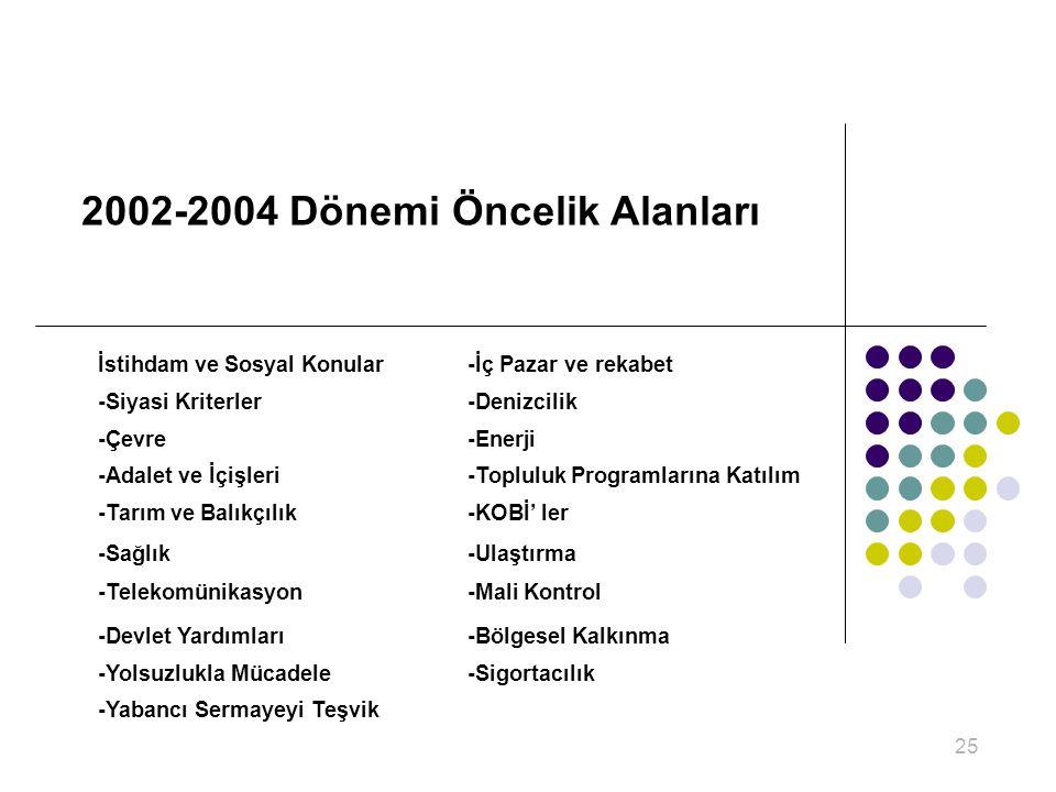 2002-2004 Dönemi Öncelik Alanları