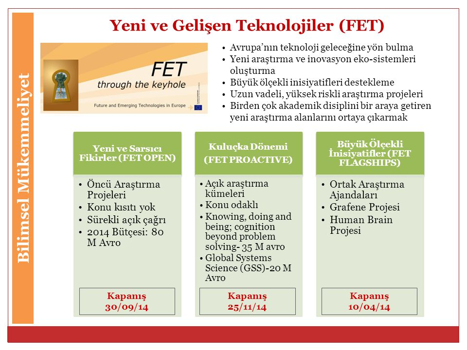 Yeni ve Gelişen Teknolojiler (FET)