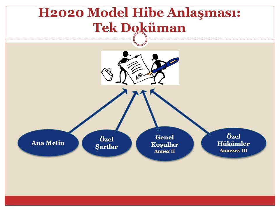 H2020 Model Hibe Anlaşması: Tek Doküman