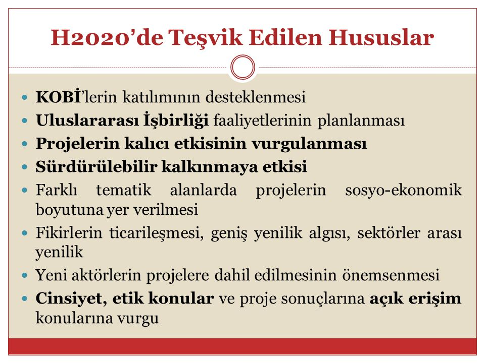 H2020'de Teşvik Edilen Hususlar