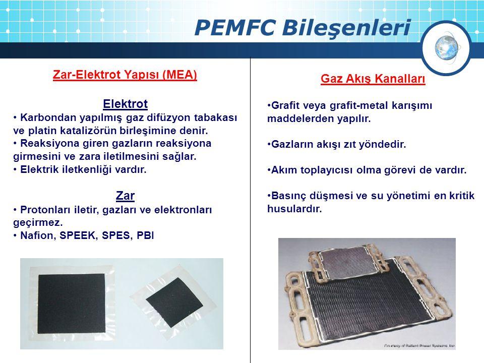 Zar-Elektrot Yapısı (MEA)