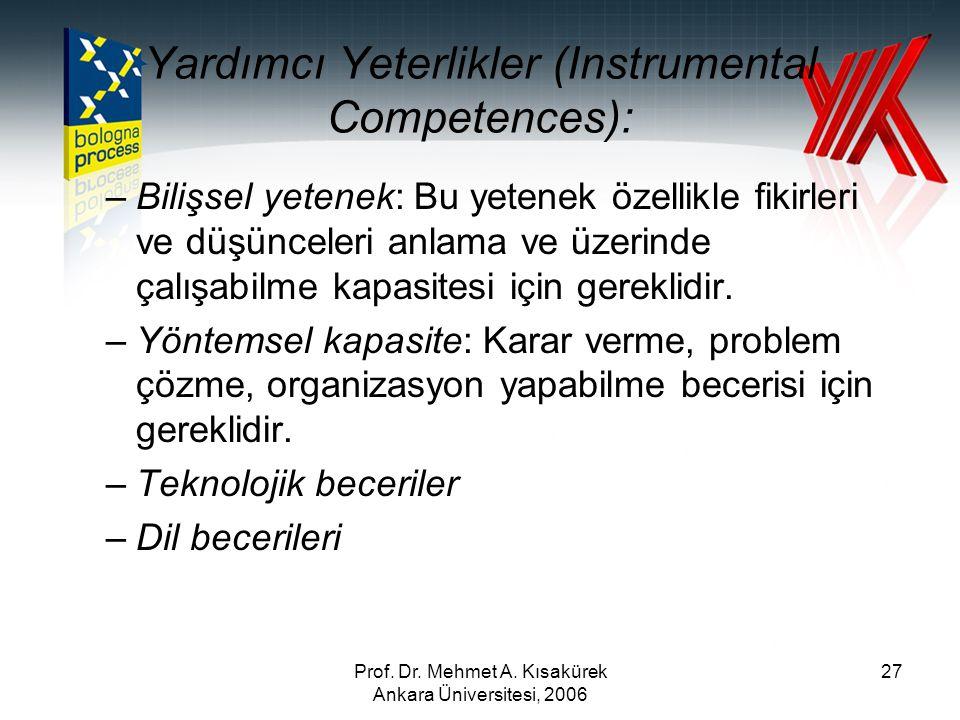 Yardımcı Yeterlikler (Instrumental Competences):