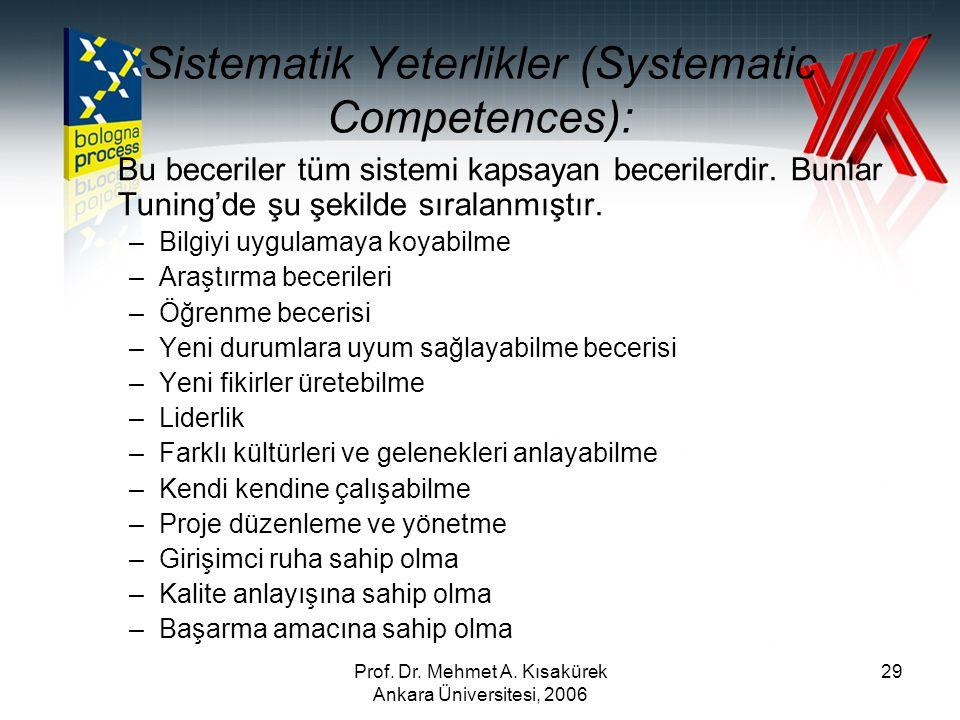Sistematik Yeterlikler (Systematic Competences):