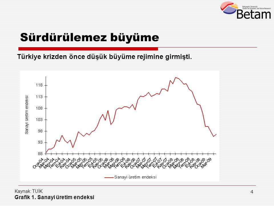 Sürdürülemez büyüme Türkiye krizden önce düşük büyüme rejimine girmişti.
