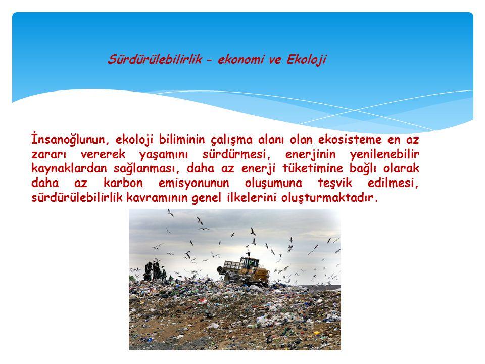 Sürdürülebilirlik - ekonomi ve Ekoloji