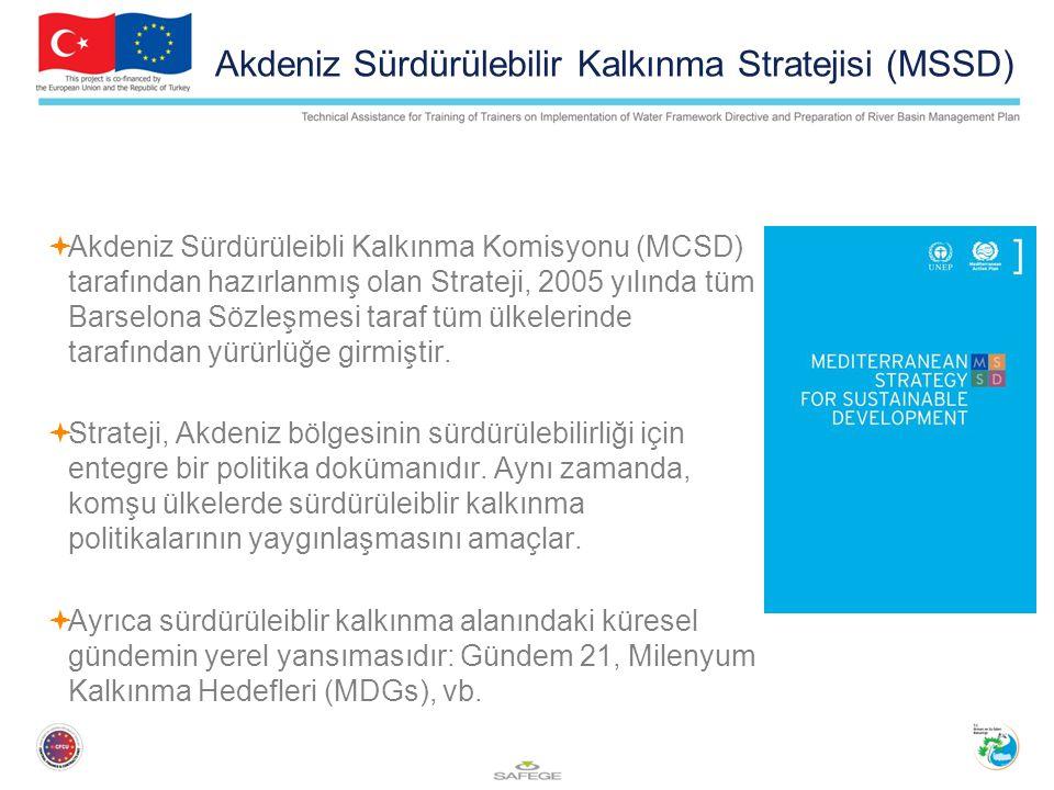 Akdeniz Sürdürülebilir Kalkınma Stratejisi (MSSD)