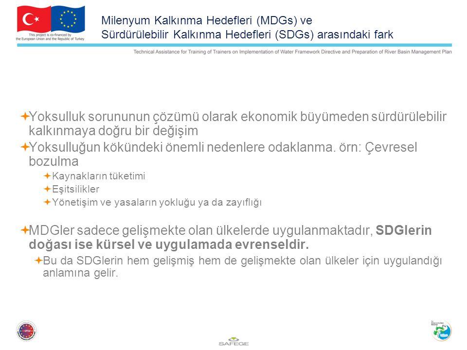 Milenyum Kalkınma Hedefleri (MDGs) ve