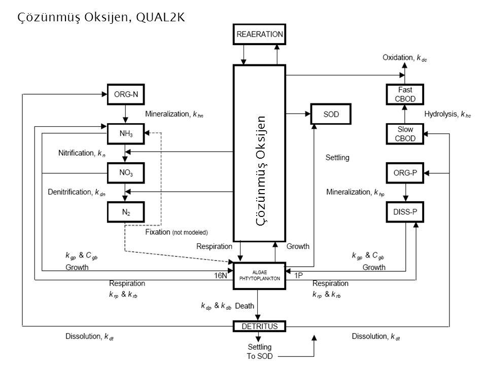 Çözünmüş Oksijen, QUAL2K